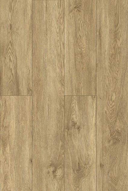 2051 plank 2