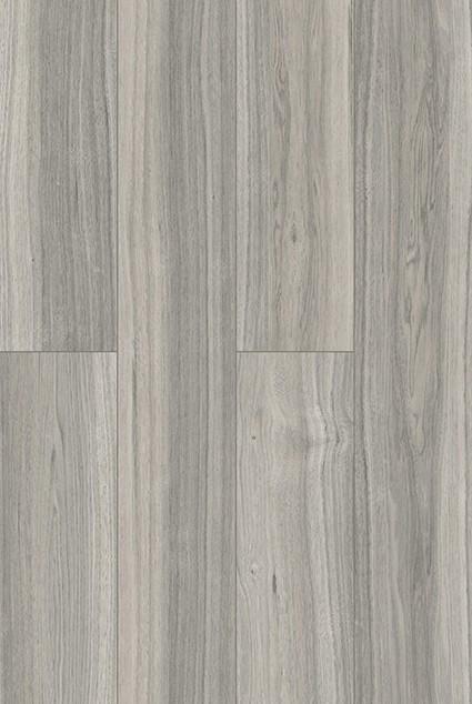 2054 plank 2