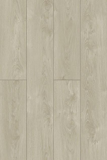2056 plank 2